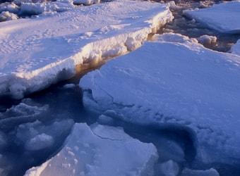 あばしりオホーツク流氷まつり