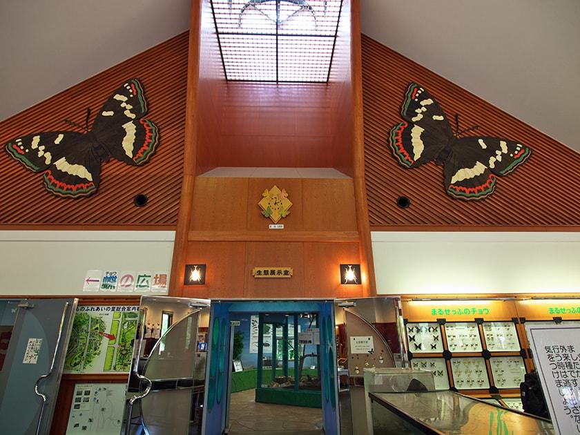 遠軽町役場昆虫生態館